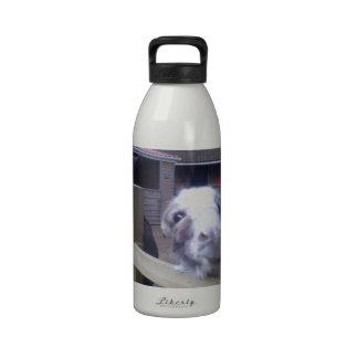 Donkey Water Bottle