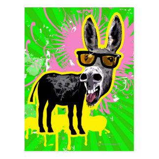 Donkey Wearing Sunglasses Postcard