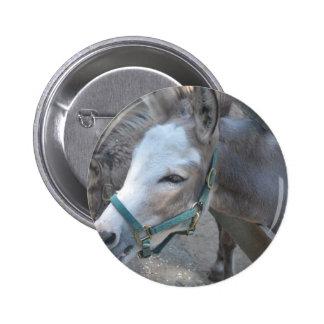 Donkeys Buttons