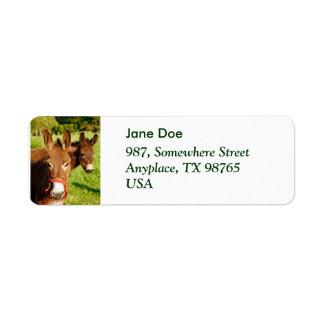 Donkeys Label