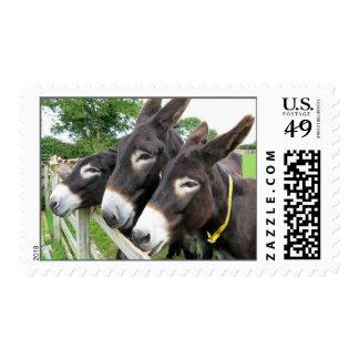 Donkeys! Postage