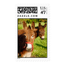 Donkeys Postage