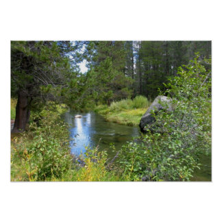 Donner Memorial State Park, Truckee, CA Poster
