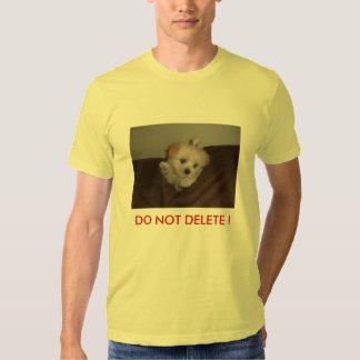 donotdelete_testbtauto T-Shirt