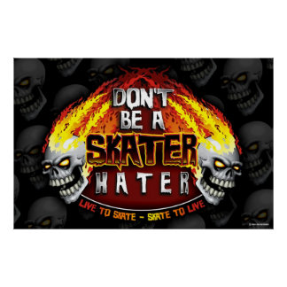 Don't Be A Skater Hater 23X35 Poster