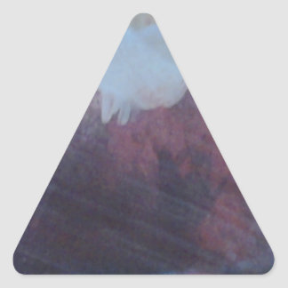 Don't Be Nosey Products Triangle Sticker