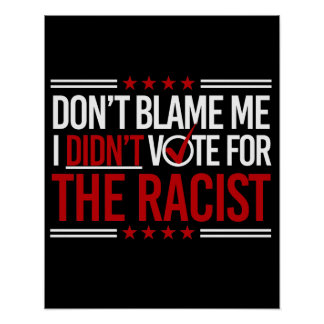 Don't Blame Me I Didn't Vote for The Racist -- Ant Poster