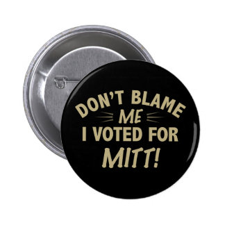 Don't Blame Me I Voted for MITT Pins