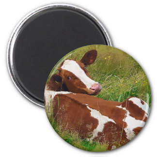 Don't Bother Me Cow 2 Inch Round Magnet