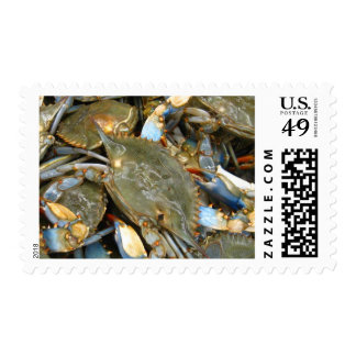 Don't Bother Me...I'm Crabby! Postage Stamps