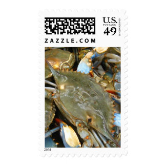 Don't Bother Me...I'm Crabby! Stamp
