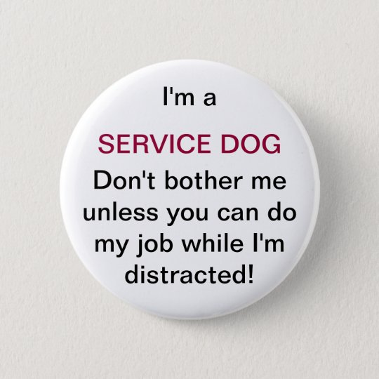 Don T Touch Service Dog In Training