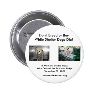 Don't Breed or Buy... Button