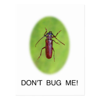 """Don't Bug Me!"" Funny Shirts and Gifts Postcard"