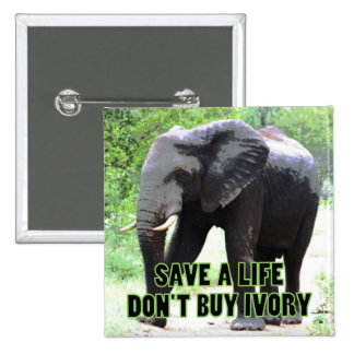 Don't Buy Ivory, Save an Elephant's Life Pinback Button