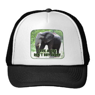 Don't Buy Ivory, Save an Elephant's Life Hats
