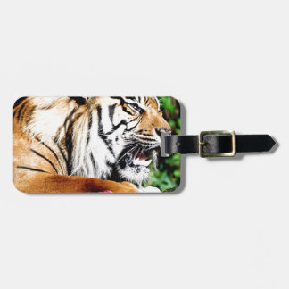 Don't come near luggage tag