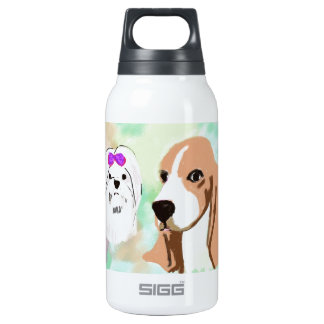 Don't compare insulated water bottle