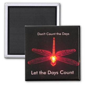 Don't Count the Days Fridge Magnet