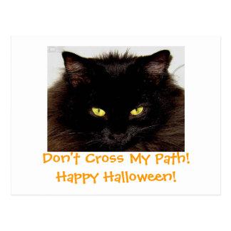 Don't Cross My Path!Happy Halloween! Postcards