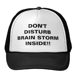 Don't Disturb Brain Storm Inside Trucker Hat