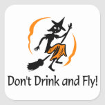 Dont Drink and Fly Sticker