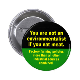 don't eat meat pinback button
