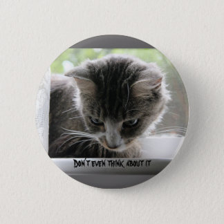 Don't even think about it pinback button