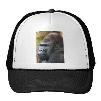 Don't Even Think It... Trucker Hat