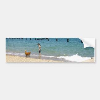 Don't Fear The Water! Bumper Sticker