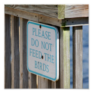 Don't Feed the Birds print