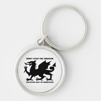 Don't Feed the Dragon Keychain