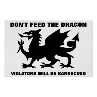 Don't Feed the Dragon Print