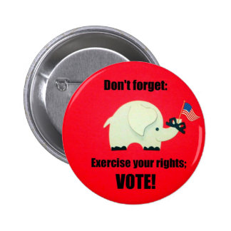 Don't forget: Exercise your rights; VOTE! Pinback Button