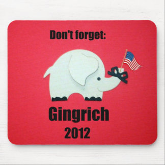Dont forget: Gingrich 2012 Mouse Pad
