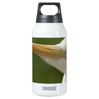 Don't Give Me Any Beak! Thermos Water Bottle
