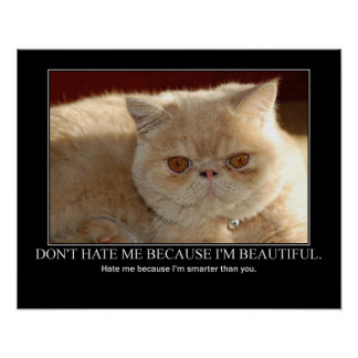 Don't Hate Me...Cat Artwork Funny Poster