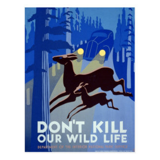 Don't Kill Our Wild Life Vintage WPA Post Cards