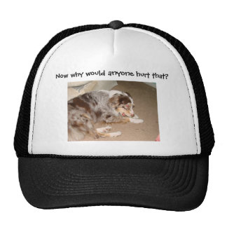 dont know 049, Now why would anyone hurt that? Hat