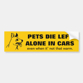 DONT LEAVE YOUR PETS ALONE IN A CAR BUMPER STICKER