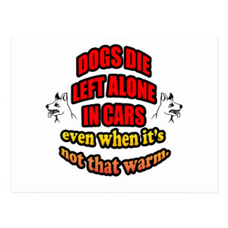 DONT LEAVE YOUR PETS ALONE IN A CAR POSTCARD