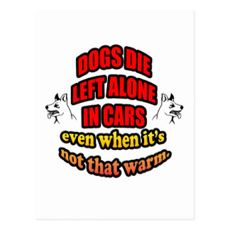 DONT LEAVE YOUR PETS ALONE IN A CAR POST CARDS
