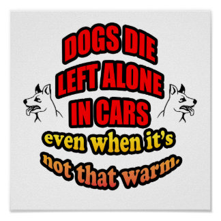 DONT LEAVE YOUR PETS ALONE IN A CAR POSTER
