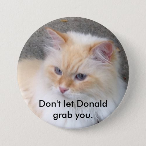 Dont let Donald grab you Pinback Button