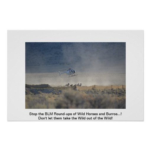 Don't Let the BLM take the wild out of the wild! Print