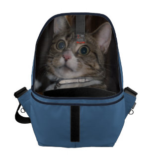 don't let the cat out of the bag Messenger Bag Courier Bags