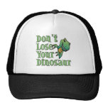Don't Lose Your Dinosaur Hat