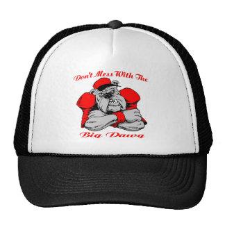 Dont Mess Big Dog Trucker Hat