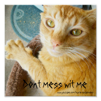 Dont mess wit me poster