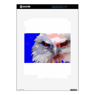 Dont mess with America iPad 2 Skins